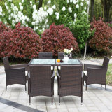 7 PCS PE Rattan Set Dining