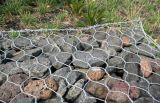 Lower Price를 위한 중국 Produce Heavy Gabion Wire Mesh