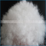 O material de enchimento seguro lavada branca ou cinza ganso e pato