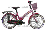 Vélo de ville (TMS-20GA)