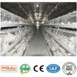 China-Geflügel sperren Geräten-Bratrost-Geflügelfarm mit automatischem Huhn ein