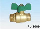Soupapes en laiton (FL-1089M/M)