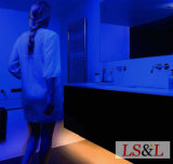 IP20 IP33 IP54 IP65 IP68はLEDのストリップロープ人間センサー夜ライトを防水する
