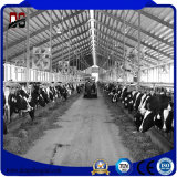 Prefabricados de acero Steelhouse Cattel Granja Vaca arrojar
