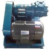 Pompa del rotore del bitume dell'acciaio inossidabile di serie di Botou Honghai Nyp