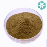 Extrait de queue de cheval / Equisetum Arvense Extrait / Silice organique