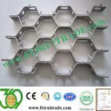 0Cr Cr13Ni9/30413/1H/316L/310S malla hexagonal de acero