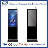 """43 """" LCD Floorstandingデジタルの表記"""