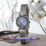 Uhr passen Luxuxarmbanduhren an (WY-017F)