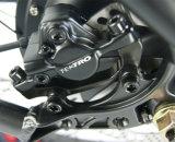 Elektrisches Fahrrad fette Ebike Fahrräder der gute Qualitäts36v 500W für Verkauf
