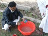 Acondicionador del suelo de Unigrow en cualquie establecimiento vegetal