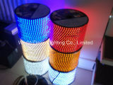 Indicatore luminoso ad alta tensione della corda con approvazione del Ce per Multi-Colored