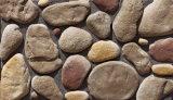 اصطناعيّة ثقافة حجارة لأنّ خارجيّ و [إينتريور ولّ]