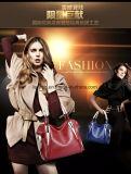 2017 la più nuova borsa all'ingrosso di modo del sacchetto di Tote delle donne del coccodrillo