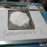 보디 빌딩 시험 E 스테로이드 호르몬 분말 테스토스테론 Enanthate