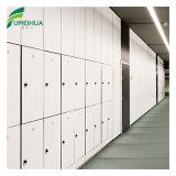 El armario de almacenamiento decorativos fenólico Fumeihua