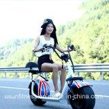 Heißer Verkauf Citycoco fetter Gummireifen-elektrisches Motorrad mit Aluminiumrad
