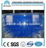 El tanque de pescados de acrílico claro modificado para requisitos particulares del acuario