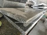 Slab 또는 Tile (G603/G654/G664/G439/G682/G684)를 위한 싼 G603 Granite