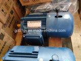 Y2ej Serien-elektromagnetischer Bremsen-Induktions-Motor