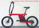 電気バイク(FR-Z1)を折る2017新しいモデル