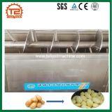 Kontinuierlicher Einleitung-Spirale-Zwiebelen-Kartoffel-Ingwer Peeler und Schalen-Maschine