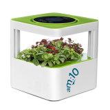 Очиститель воздуха для настольных ПК с фильтры HEPA, угольный фильтр, 100% аромат растений и отрицательно заряженные ионы.