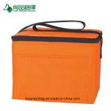 Personnaliser économique 210D polyester poche frontale à fermeture à glissière 6 bidons de sac à lunch du refroidisseur