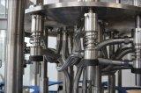 Grosses Flaschen-Drehwasser-füllende Pflanze/Zeile/System/Maschine