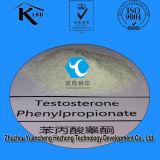 Testosterona blanca esteroide Phenylpropionate del polvo para el aumento de la masa del músculo