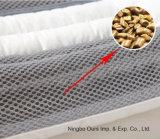 Hot Sale Les enfants des soins de santé Cassia rempli de semence 100% coton oreiller