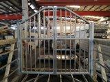 Puerta de la pasarela