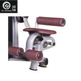 De speld laadde de Totale BuikApparatuur van de Geschiktheid van de Gymnastiek van de Machine Sm8019