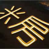 Signe au néon fait sur commande DEL d'éclairage au néon décoratif extérieur de Noël