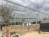 暖かいシステムが付いているプレハブの鉄骨構造の建築構造の温室フレーム