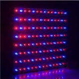 Venda a quente LED estufa crescem plantas da retaguarda