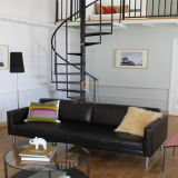 Escadaria preta da espiral do aço de carbono para o edifício