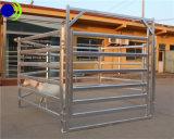 가축은 직류 전기를 통한 금속 검술을 통제한다