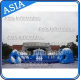 Material PVC agua inflable parque juegos, tobogán inflable delfín de agua con piscina