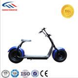Moteur double Citycoco Scooter électrique