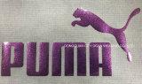 Logotipo reflexivo da transferência térmica da cor brilhante para acessórios de roupa