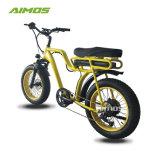 Meilleur pneu adulte Beach Cruiser Fat vélo électrique avec batterie rechargeable