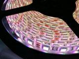 LED 지구 SMD5050 5m DC12 DC24V LED 빛 테이프 빛