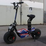 Posséder le scooter électrique 1600W de pliage fou de brevet pour des pays d'UE