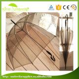Paraguas transparente de Sun de los paraguas promocionales blancos rectos automáticos