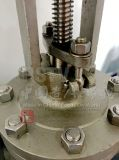 Válvula de globo del borde de rueda de mano del acero inoxidable del molde
