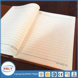 Het Notitieboekje van het Document van de Steen van het Voorbeeldenboek van de school