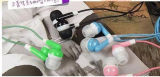Bevordering 6 het Fruit Earbuds van giften van het Suikergoed van Kleuren in de Oortelefoons van de Hoofdtelefoon van het Oor