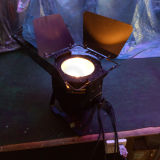 100Wディスコの段階ライト穂軸暖かく白い小型LEDの同価
