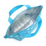 Мешок охладителя обеда пикника Tote повелительниц симпатичный напольный изолированный